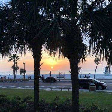 Zonsondergang tussen de palmbomen