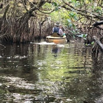 Met de kajak tussen de alligators van de Everglades
