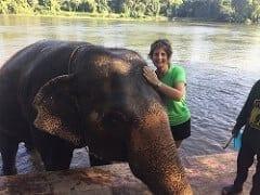 poseren met een olifant