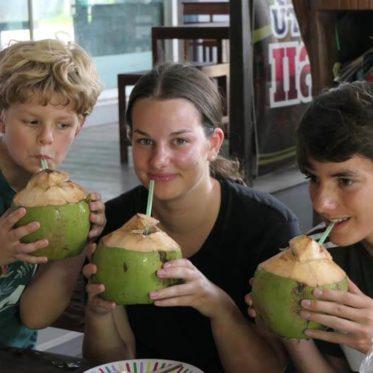 kokosnoot drinken