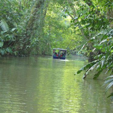 Door de kanalen varen in Tortuguero