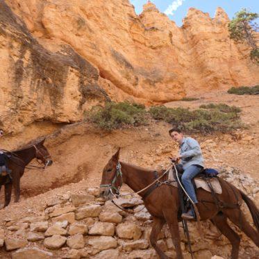 als een cowboy door de valley
