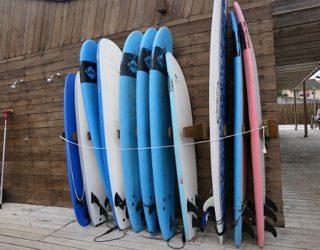 De surfplanken bij de boomhut