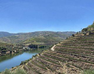 Cruisen langs de wijnranken op de Douro rivier