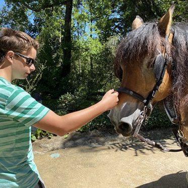 Met paard en kar door Portugal