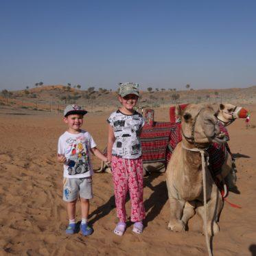 kinderen op kamelen